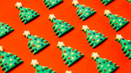 Mini Christmas Trees  image 5