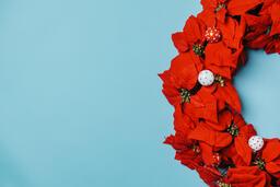 Red Poinsettia Wreath  image 1