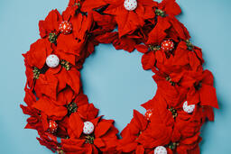 Red Poinsettia Wreath  image 4