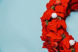 Red Poinsettia Wreath  image 6