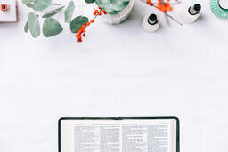 Open Bible with Christmas Florals  image 2