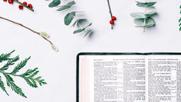 Open Bible with Christmas Florals  image 5