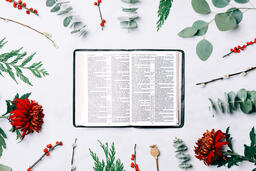 Open Bible with Christmas Florals  image 4