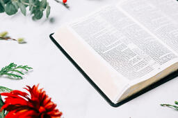 Open Bible with Christmas Florals  image 1