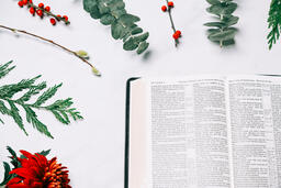 Open Bible with Christmas Florals  image 6