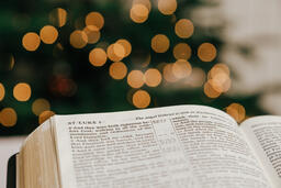 Open Bible in Front of the Christmas Tree  image 1