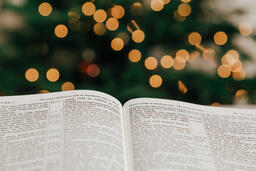 Open Bible in Front of the Christmas Tree  image 2