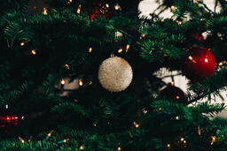 Ornaments on a Christmas Tree  image 3