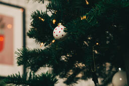Ornaments on a Christmas Tree  image 4