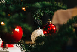 Ornaments on a Christmas Tree  image 12