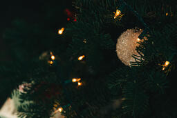 Ornaments on a Christmas Tree  image 1
