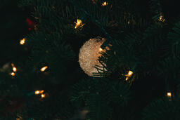 Ornaments on a Christmas Tree  image 8