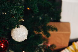 Ornaments on a Christmas Tree  image 13