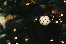 Ornaments on a Christmas Tree  image 11