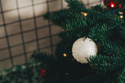 Ornaments on a Christmas Tree  image 5