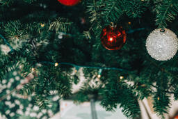 Ornaments on a Christmas Tree  image 15