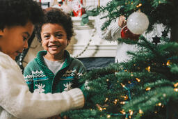 Kids Decorating the Christmas Tree Together  image 10