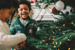 Kids Decorating the Christmas Tree Together  image 8