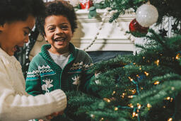 Kids Decorating the Christmas Tree Together  image 9