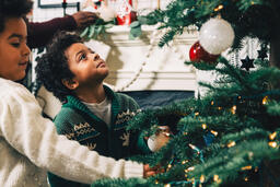 Kids Decorating the Christmas Tree Together  image 3