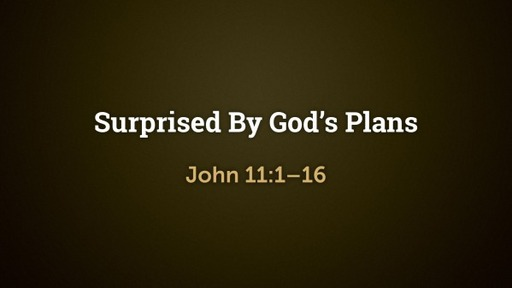 Surprised By God's Plans (John 11:1–16)