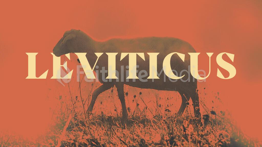 Leviticus Orange large preview