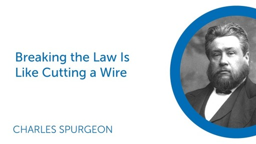 Breaking the Law Is Like Cutting a Wire