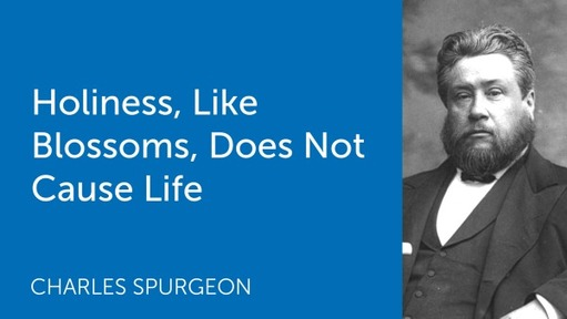 Holiness, Like Blossoms, Does Not Cause Life