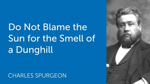 Do Not Blame the Sun for the Smell of a Dunghill