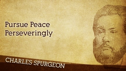 Pursue Peace Perseveringly