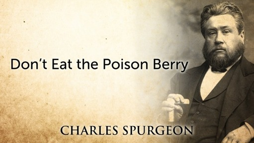 Don't Eat the Poison Berry