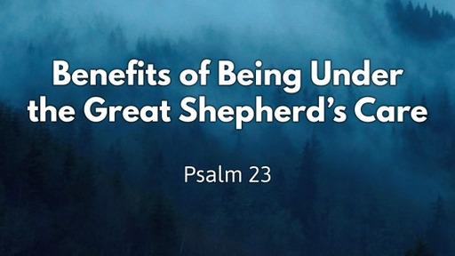 Psalm 23  Benefits of Being Under the Great Shepherd's Care