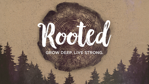 Rooted in Giving