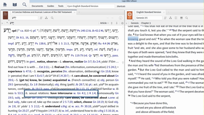 Contrasting Two Hebrew Words for Knowledge in Genesis 2–3