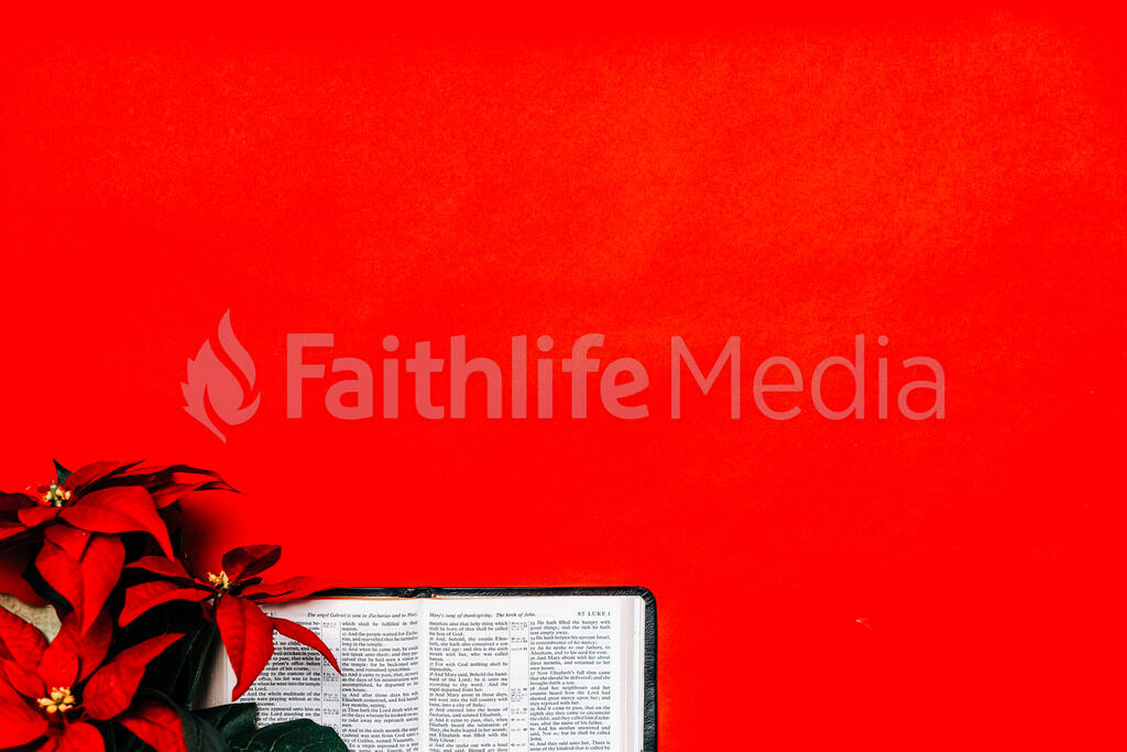 Open Bible with a Red Poinsettia large preview
