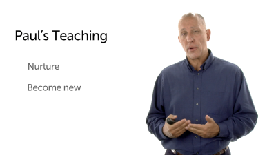 The Teaching of Paul