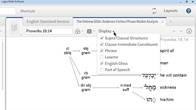 Analyzing the Structure of Hebrew Poetry