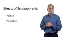 Biopsychosocial Elements as Components of Psychopathology