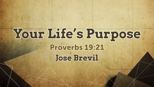 Your Life's Purpose |  Proverbs 19:21; Psalm 139:13-16