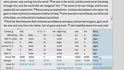 Information Included in an Interlinear