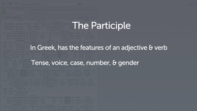 Introducing the Participle