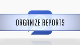 Organizing Reports