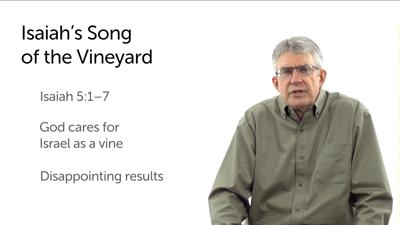 God's Vineyard