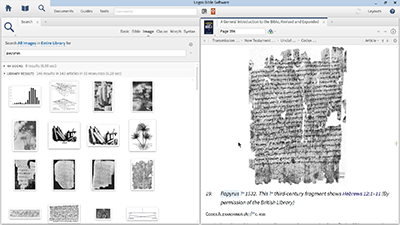 Adding Manuscript Images to Presentations or Documents