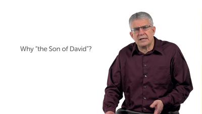 Son of David and the Sign of Jonah (Matt 12:22–42)
