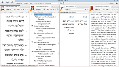 Viewing Biblical Dead Sea Scrolls in Logos and Online