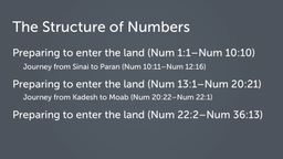 The Structure of Numbers