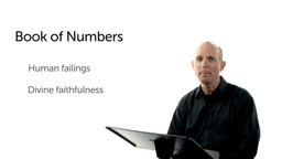 An Overview of Numbers