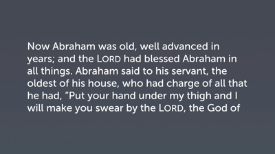 Examples of Stewardship