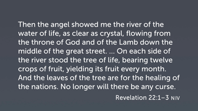 The Tree of Life in Revelation 22:1–3